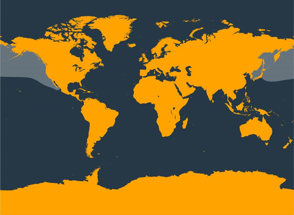 Baird's beaked whale distribution map