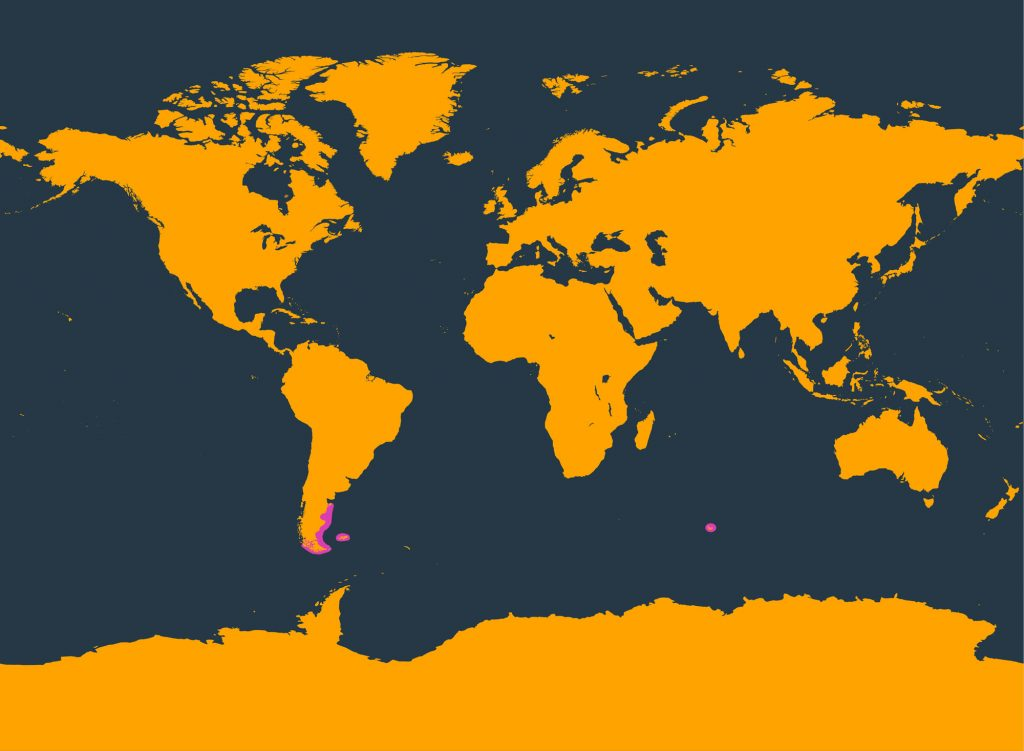 Commerson's dolphin distribution map